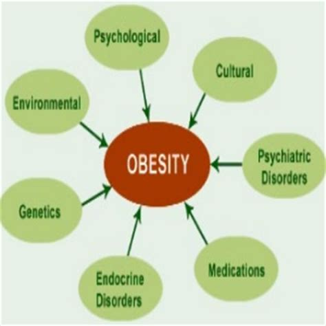 How to write a good thesis statement about obesity - Quora